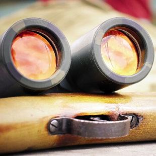 Верный глаз