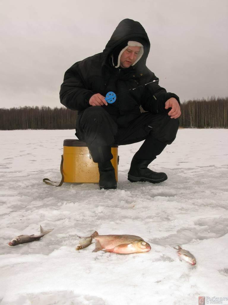 видео рыбалка на крупного леща