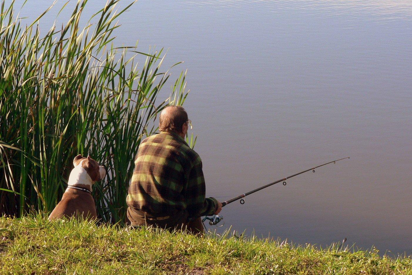Рыбак на берегу с собакой