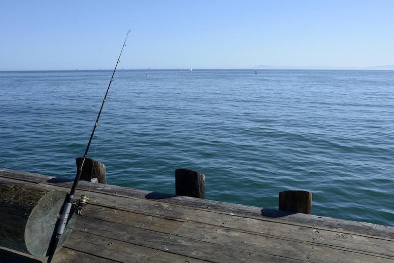 Рыболовы на мостике в Алтае