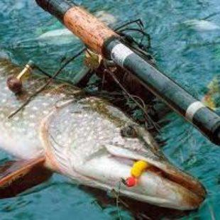 Видео о ловле на джиг спиннинг