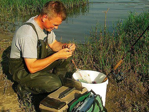 Ароматизаторы для прикормки, влияние запаха на клев рыбы