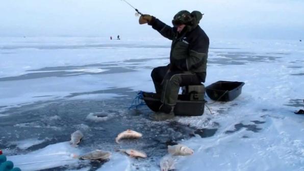 Зимняя рыбалка в Астрахани: рыболовные базы, лучшие места и снасти