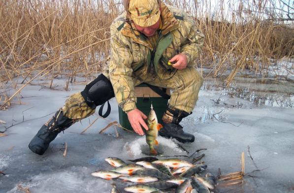 Подледный лов – отдых душой и телом