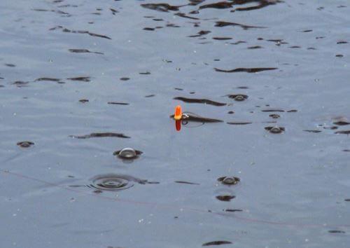Огрузка поплавка весной