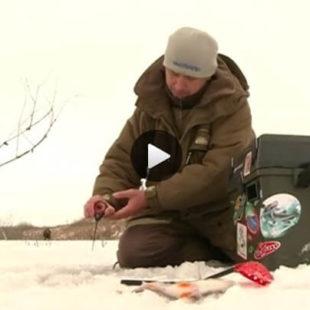 Ловля окуня и карася по первому льду