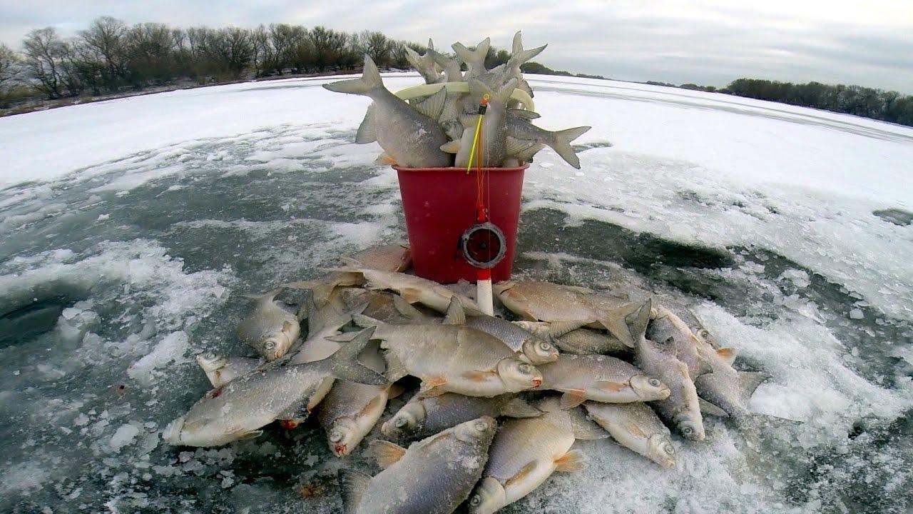 Ловля белой рыбы в феврале