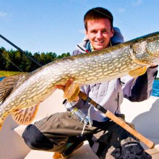 Диалоги о рыбалке №79. Щука. Спининговые приманки