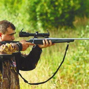 Законы об охоте вБашкирии