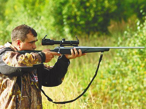 Актуальные правила и законы охоты в Башкирии на сегодняшний день