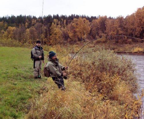 История нахлыста в Мурманской области