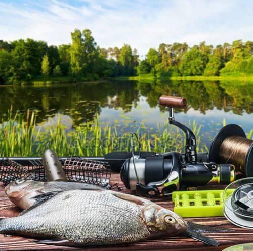 на какие снасти запрещено ловить рыбу в россии