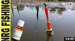 Видео о ловле карася на корвалол в камыше поплавочной удочкой