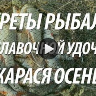 Видео о ловле карася в трудных местах