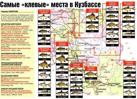 Карта рыбных мест Ульяновской области