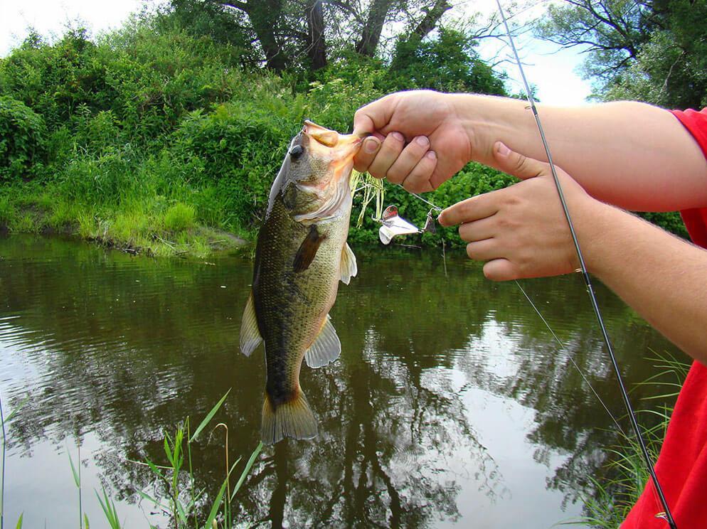 рыбалка в вашингтоне