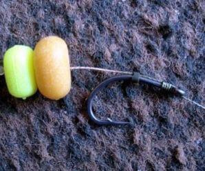 Кукуруза для рыбалки на карпа