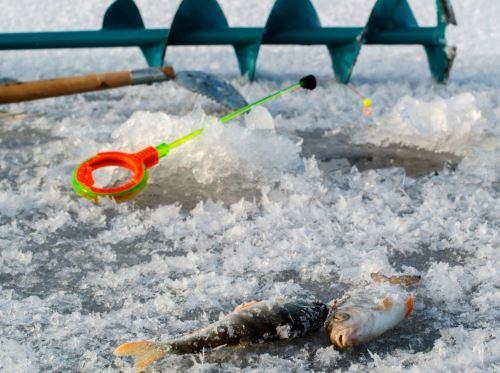 Как выбрать ледобур в зависимости от типа рыбалки