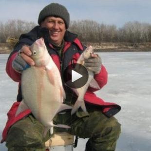 Видео о ловле леща ночью зимой