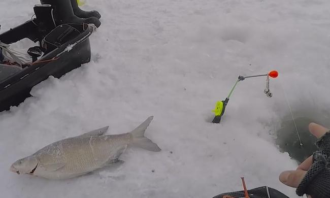 Рыбалка на леща на льду