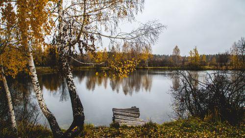 Осенняя джиговая рыбалка на судака