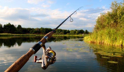 Спиннинг для джиговой ловли судака