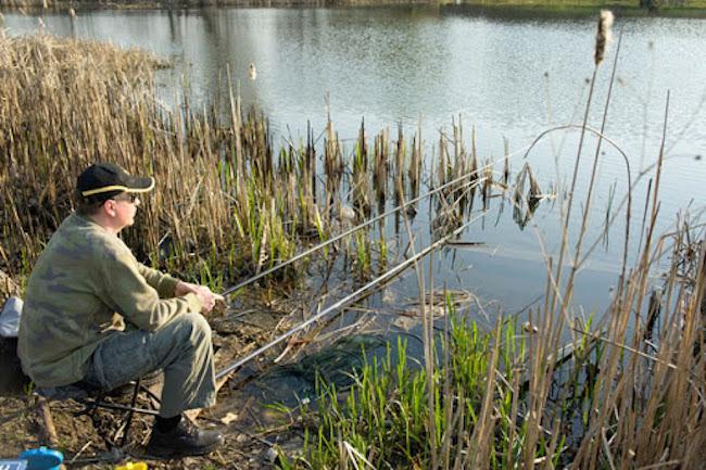 Рыболов с удочками на берегу