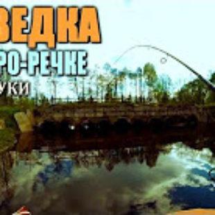 Видео о ловле щуки на малой реке