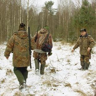 Мониторинг охотничьих ресурсов