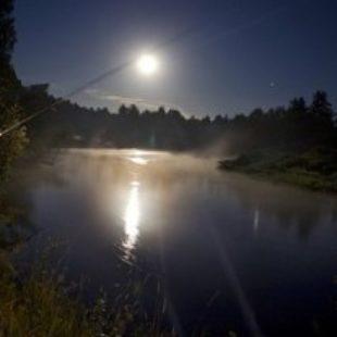 Видео о ночной ловли судака на джиг осенью