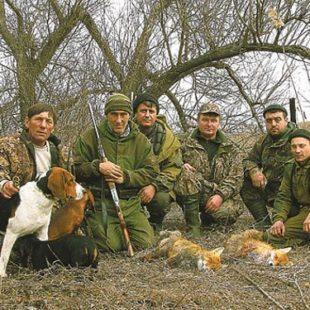 Охота на лисицу в Крыму
