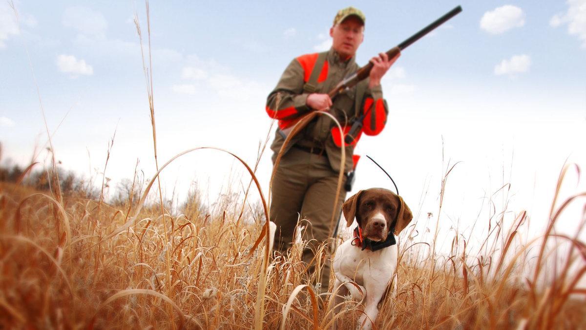 Где покупать оборудование для охоты