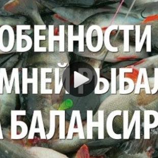 Видео о советах по зимней рыбалке