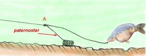 Где использовать патерностер и петлю гарднера для фидера
