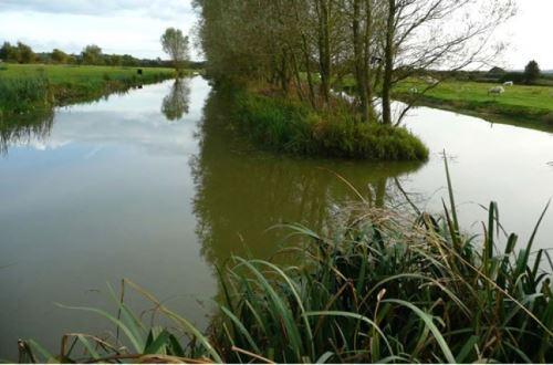 Платные пруды и озера