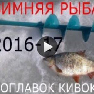 Видео о зимней рыбалке на плотву