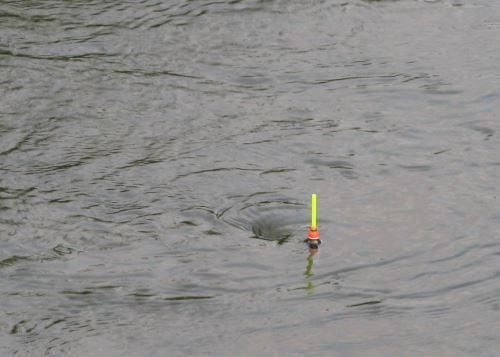 Поплавок для ловли на течении