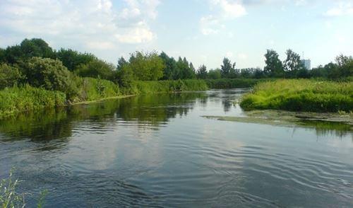 Бесплатные места для рыбалки в Балашихе
