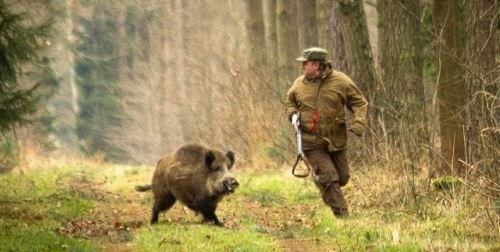 Роль оптики на охоте