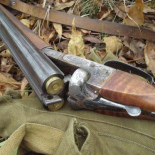 Характеристики охотничьего ружья ИЖ-54