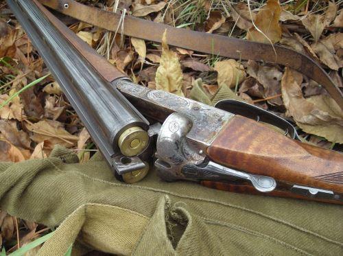 Ружье ИЖ-54