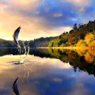 Поход с рыбалкой: выбираем самые перспективные маршруты