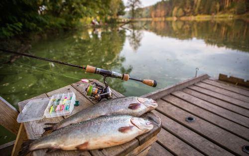 Самые рыбные места в Астраханской области