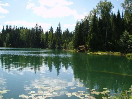 Бесплатные места для рыбалки вБрянской области