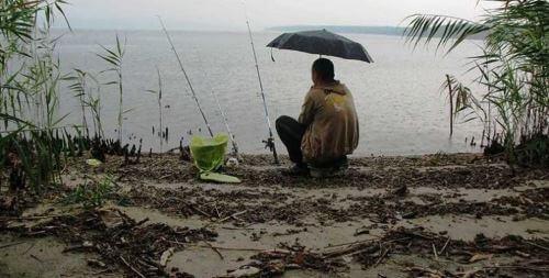 Выбор места рыбалки в дождливую погоду