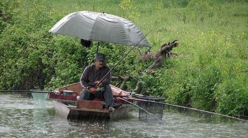 Усиливается ли клев после дождя