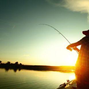 Самые рыбные места в Домодедово