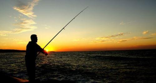 Самые рыбные места в Химках