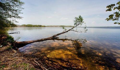 Бесплатные места для рыбалки вКалининградской области