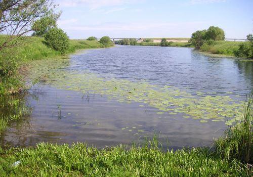 Бесплатные места для рыбалки вКалужской области
